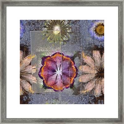 Stickball Au Naturel Flower  Id 16165-150329-07211 Framed Print