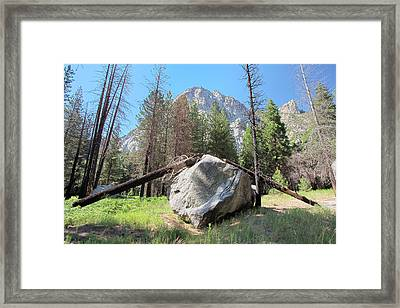 Sticks And Rock Framed Print by Rick Pham