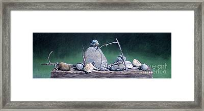 Sticks And Stones Framed Print by David Francis