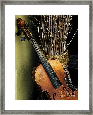 Sticks And Strings Framed Print
