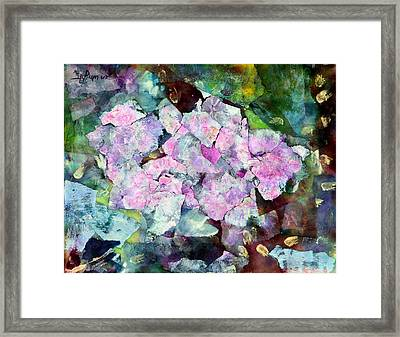 Sticky Geranium Framed Print by Don  Wright