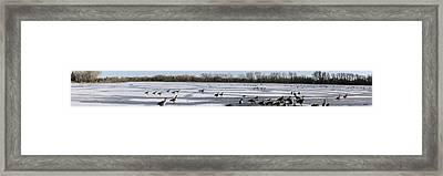 Stiff Water On Henderson Framed Print