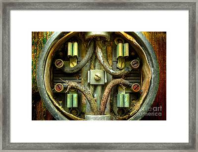 Still Connected Framed Print by Michael Eingle