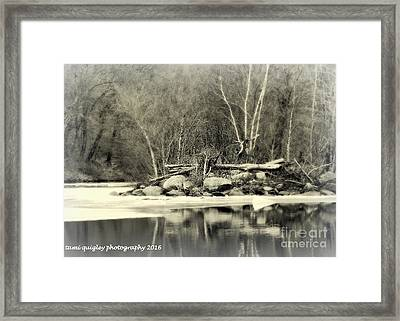 Still December  Framed Print