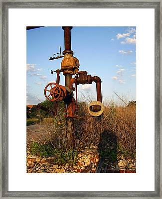 Still Here Framed Print by Flavia Westerwelle