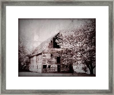 Still Here Framed Print by Julie Hamilton