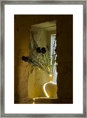 Still Image Framed Print