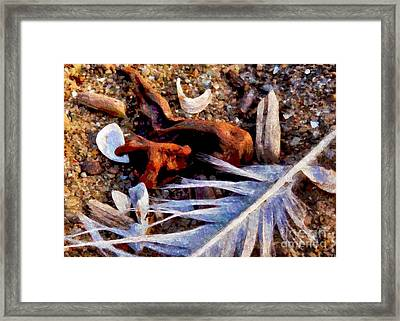 Still Life At Beach 2015 Framed Print