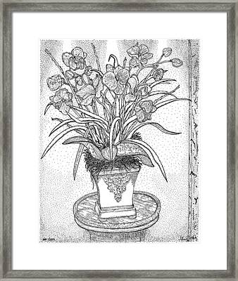 Still Life Framed Print by Glenn McCarthy Art and Photography