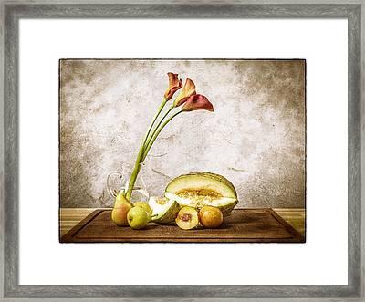 Still Life II Framed Print by Stefan Nielsen