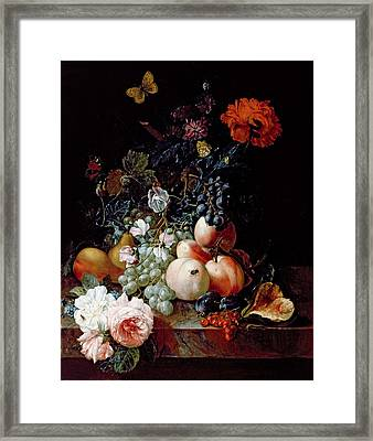 Still Life  Framed Print by Johann Amandus Winck