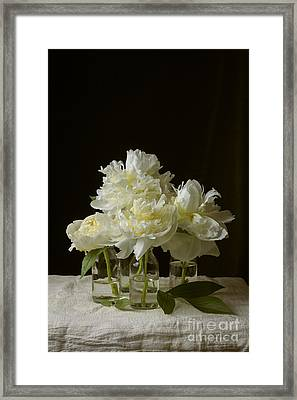 Still Life Of Peony Flowers On Table Framed Print by Edward Fielding