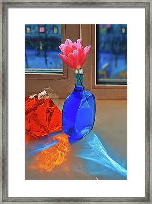 Framed Print featuring the photograph Still Life With A Flower by Vladimir Kholostykh