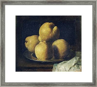 Still Life With Dish Of Quince Framed Print by Francisco de Zurbaran