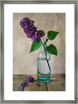 Framed Print featuring the photograph Still Life With Fresh Lilac by Jaroslaw Blaminsky