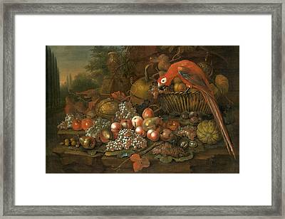 Still Life With Fruits And A Parrot Framed Print