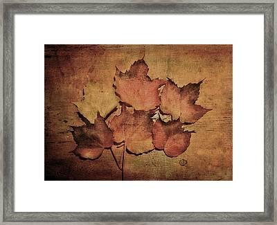 Still Life With Leaves Framed Print
