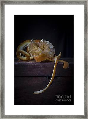 Still Life With Orange Framed Print