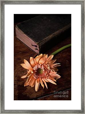 Still Life With Orange Flower And Old Bible Framed Print by Edward Fielding