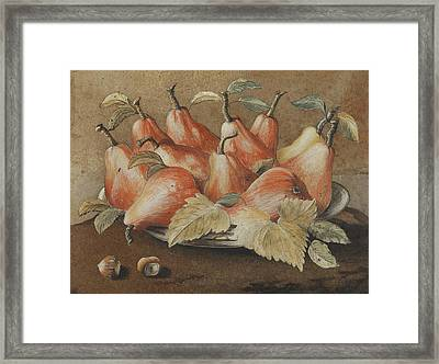 Still Life With Pears And Hazelnuts Framed Print