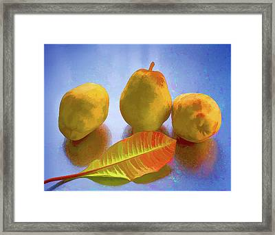 Framed Print featuring the photograph Still Life With Pears by Vladimir Kholostykh