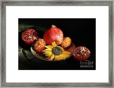 Still Life With Pomegranates. Framed Print