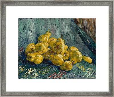 Still Life With Quinces, 1888 - 1889 Framed Print by Vincent Van Gogh
