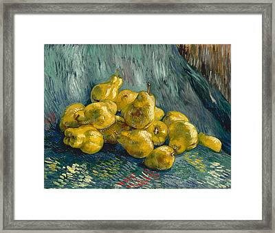 Still Life With Quinces Framed Print by Vincent van Gogh