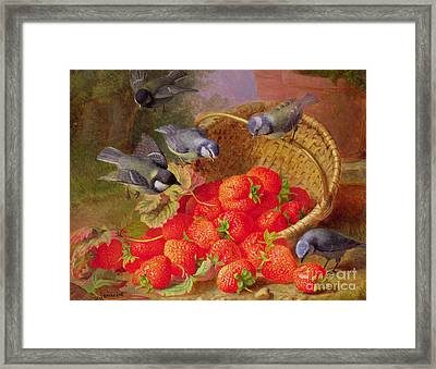 Still Life With Strawberries And Bluetits Framed Print