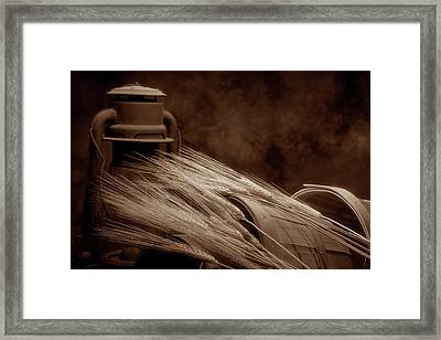 Still Life With Wheat I Framed Print