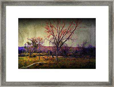Framed Print featuring the photograph Still by Mark Ross