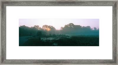 Still Mist Framed Print by Tom Hefko