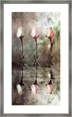 Still Framed Print by Jacky Gerritsen