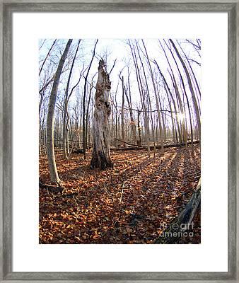 Still Standing 2 Framed Print