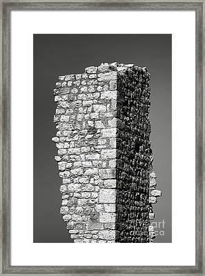 Still Standing Framed Print by Olivier Le Queinec