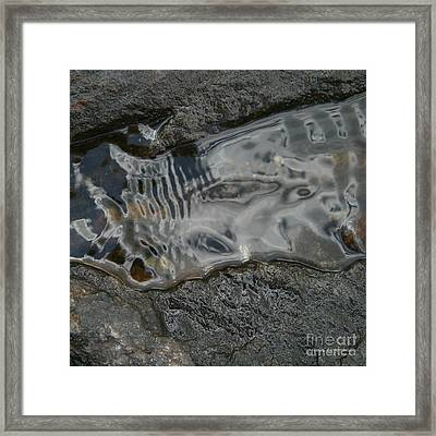 Still Stream Skeleton Screams Framed Print