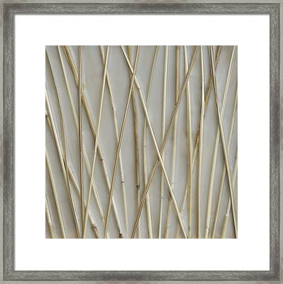 Still Framed Print by Susie Frazier
