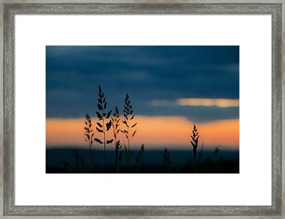 Still Framed Print by Tom McCarthy