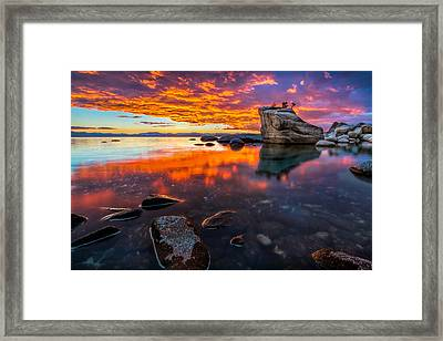 Still Waiting Framed Print by Steve Baranek