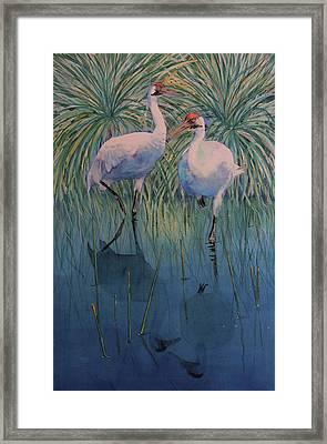 Still Water Framed Print by Vicky Lilla
