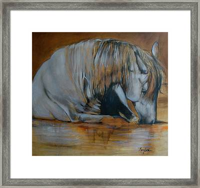 Still Waters Framed Print by Mary Leslie