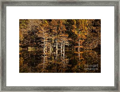 Still Waters On Beaver's Bend Framed Print