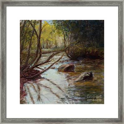 Still Waters Framed Print by Susan Driver