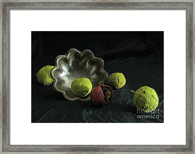 Stilled Life And Silver Bowl Framed Print