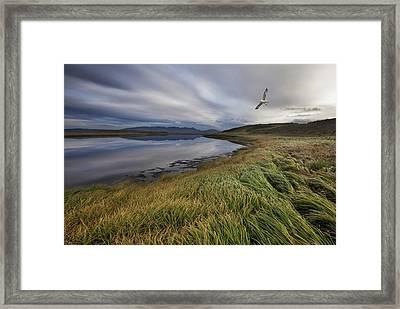 Stillness Framed Print by Bragi Ingibergsson -