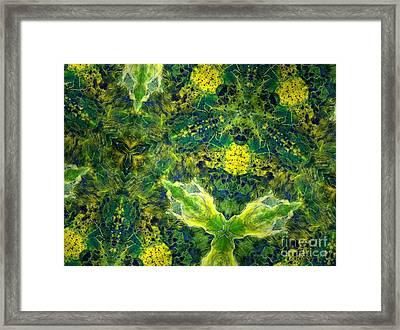 Stillness Framed Print by Denise Nickey