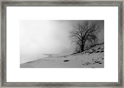 Stillness Framed Print by Donna Duckworth