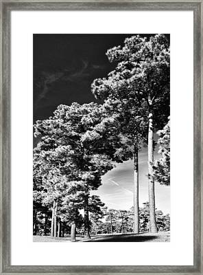 Stillness Framed Print by Gerlinde Keating - Galleria GK Keating Associates Inc