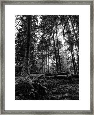 Stillpoint Framed Print