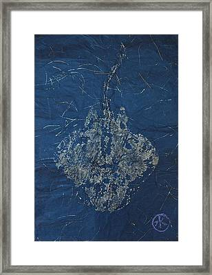 Stingray - Skate  Framed Print by Jeffrey Canha